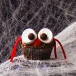 Halloween Spider Cupcakes - 2Teaspoons