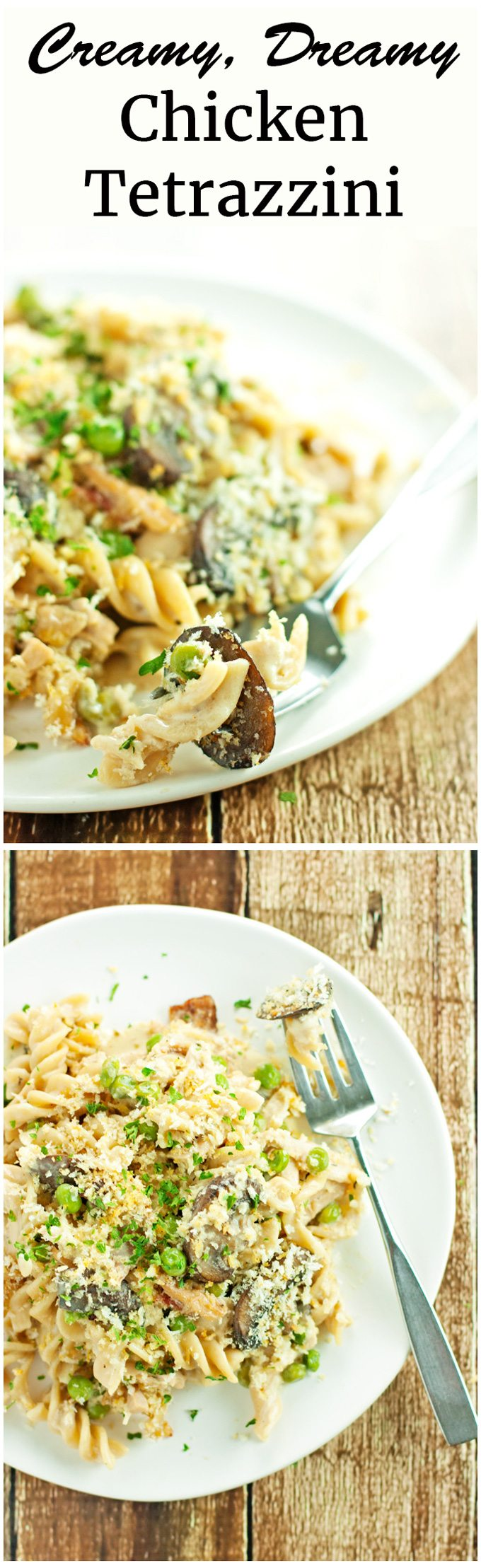 Creamy, dreamy chicken tetrazzini bursting with chicken, mushrooms, peas, and bacon. Dinner is served!